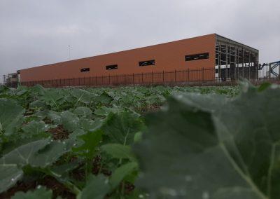 Предприятие за преработка и съхранение на плодове и зеленчуци